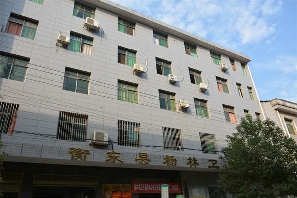 衡东县杨林卫生院环保工程